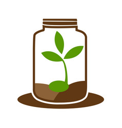 Green sprout in jar logo graphic element vector
