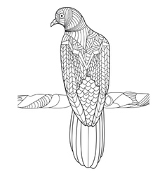 Dove coloring book for adults vector image