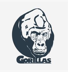 gorilla head logo design vector image