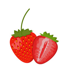 strawberry isolated on white background vector image