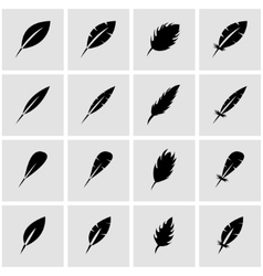 black feather icon set vector image
