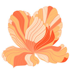 Graphic flower lines in orange pink colors vector