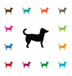 isolated pooch icon dog element can be vector image
