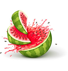 Juicy ripe watermelon cuts vector