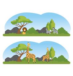 Set wild animals in the nature safari reserve vector