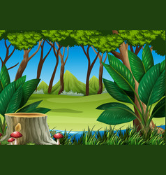 forest scene with stump tree and mountains vector image vector image