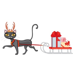 Cat brings gifts on sledge vector image