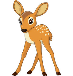 Cute baby deer vector