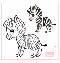 cute cartoon little zebra color and outlined on a vector image