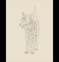 Face dog portait cute dog hand drawn sketch vector