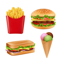 fast food pictures hamburger sandwich fries vector image