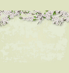 Flowering branches tree and stucco wall background vector