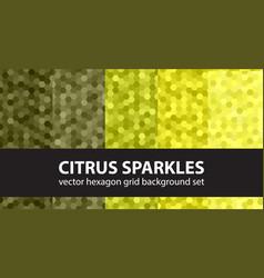 hexagon pattern set citrus sparkles seamless vector image