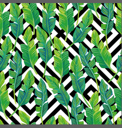 palm leaves seamless pattern black white vector image