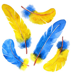 Watercolor feather set hand drawn vector