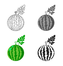 Watermelon icon cartoon single plant icon from vector