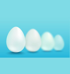 white eggs vector image