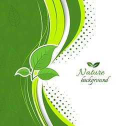 Nature background with green leaves vector