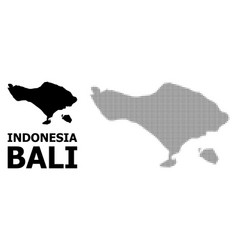 Halftone pattern and solid map bali vector