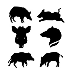 Boar set vector image