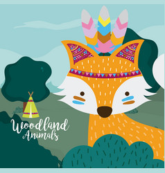 fox woodland animals vector image