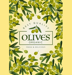 Green olives frame branches with fruits vector