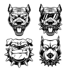 Set angry dog heads in monochrome style vector