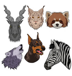 set animal heads isolated on a white background vector image