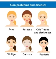 Skin problems and diseases vector image