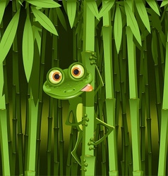 curious frog vector image vector image