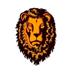 Head of Lion vector image vector image