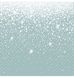 Snow effect isolated Falling Snow winter vector image