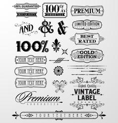 Label Design Element vector image vector image