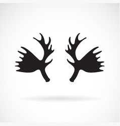 antler mousse on a white background wild animals vector image