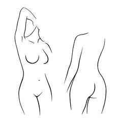 beautiful nude woman back and front view vector image