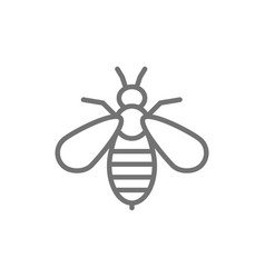 Bee venom therapy line icon isolated on white vector