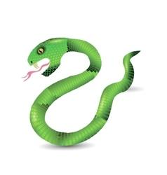 Cartoon Green Snakes vector