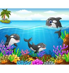 cartoon whale under the sea vector image