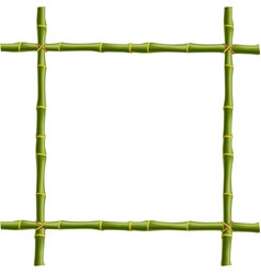 Frame made of green bamboo sticks bounded with vector