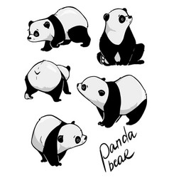 Hand drawing cute panda with a lot of variation vector