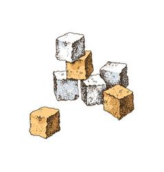 hand drawn sugar cubes vector image