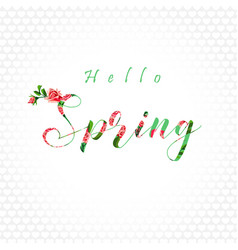 hello spring white bg vector image