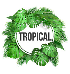 round frame with tropical leaves vector image