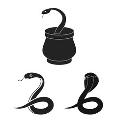 snake and cobra sign s vector image