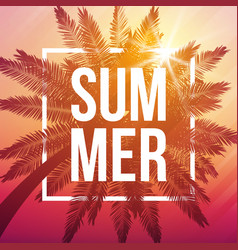 summer dusk background with palm and frame vector image