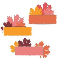 Autumn maple leaves design vector image