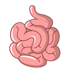 Small intestine icon cartoon style vector