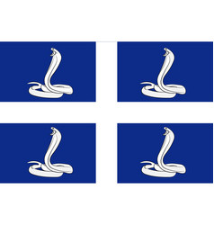 flag of martinique france vector image