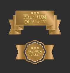 gold premium design template vector image