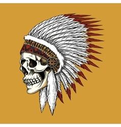 indian skull vector image vector image